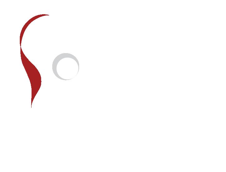 eap mandolines & guitares de Toulouse